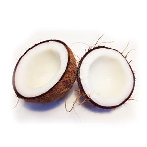 Encyklopedie potravin - Kokos