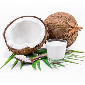 Encyklopedie potravin - kokosové mléko