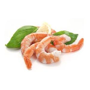 Encyklopedie potravin - Krevety
