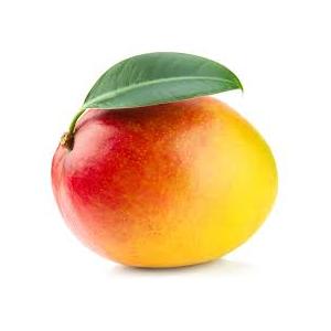 Encyklopedie potravin - Mango