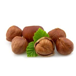 Encyklopedie potravin - Ořechy lískové