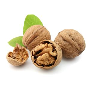Encyklopedie potravin - Ořechy vlašské