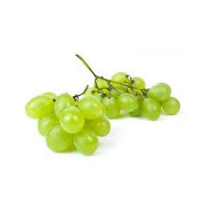 Encyklopedie potravin - Víno hroznové